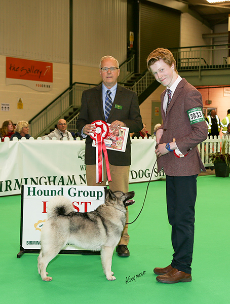 Birmingham Dog Show Society  Results